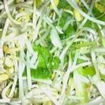 Салат из соевых бобов с сельдереем и сыром