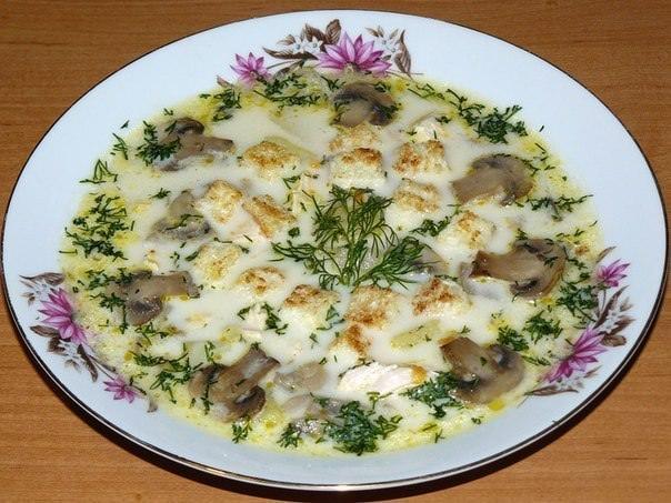 Сырный суп с грибами и курицей фото