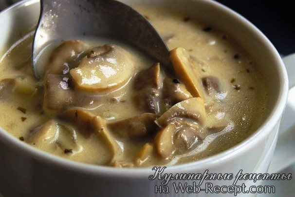 Грибной суп фото