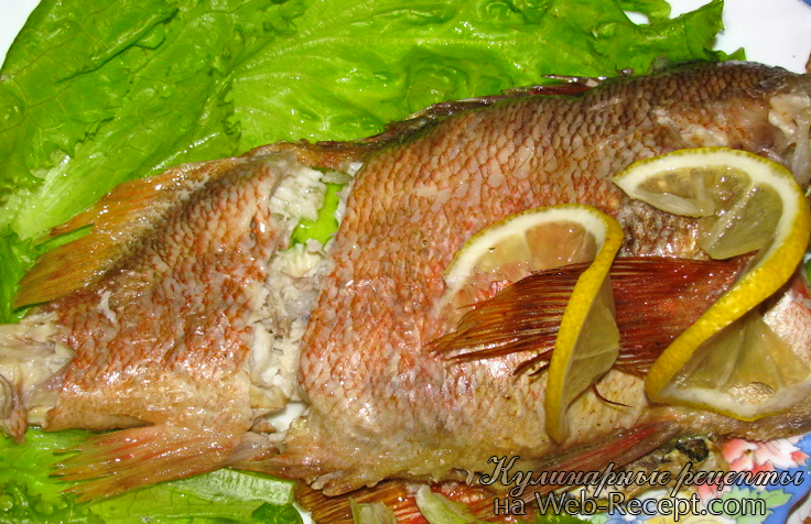 Морской окунь запеченный в соли фото