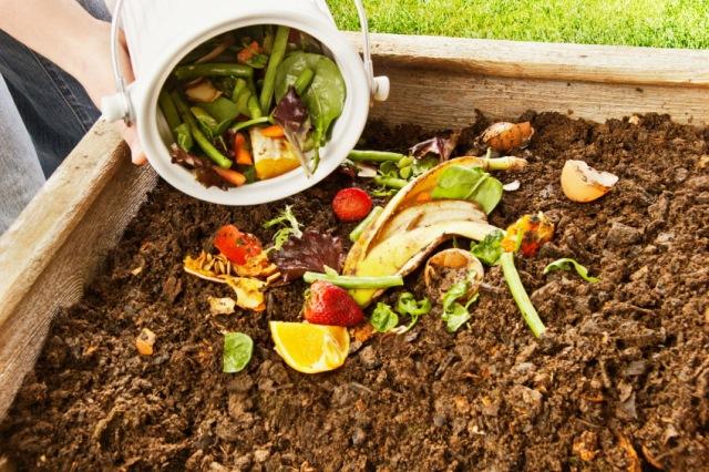 пищевые отходы - лучшее органическое удобрение, фото