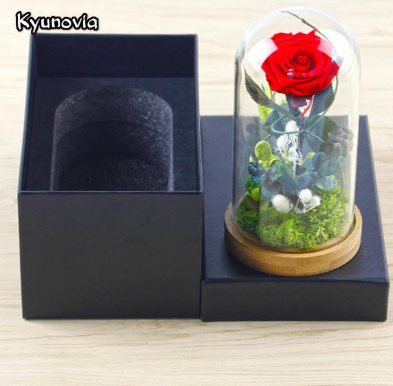 роза в стеклянной колбе, Kyunovia ky 78, foto