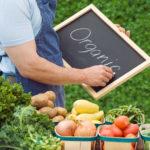 Особенности современного и органического сельского хозяйства